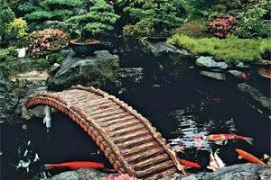 24 300x288 Строим пруд в своем саду